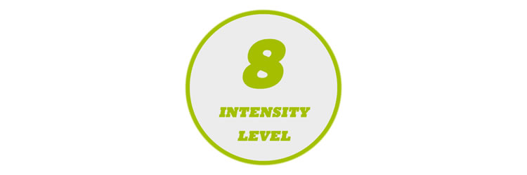 8 Levels of Intensity