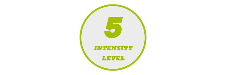 5 Levels of Output Intensity
